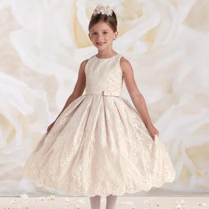 Cute Little Girl Dress ,Princess Gi..